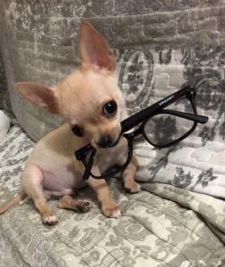 Keko con gafas